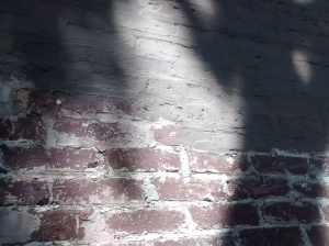 Partially Stripped Brick