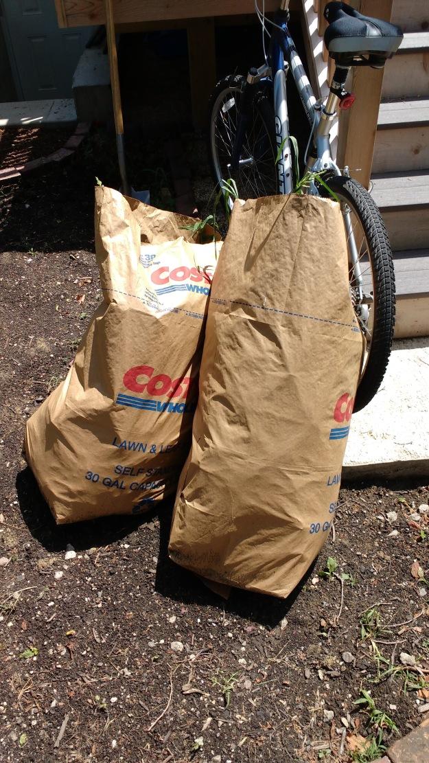 yard waste bags costco